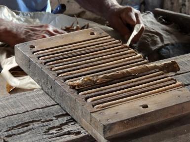 Robaina Tobacco Plantation
