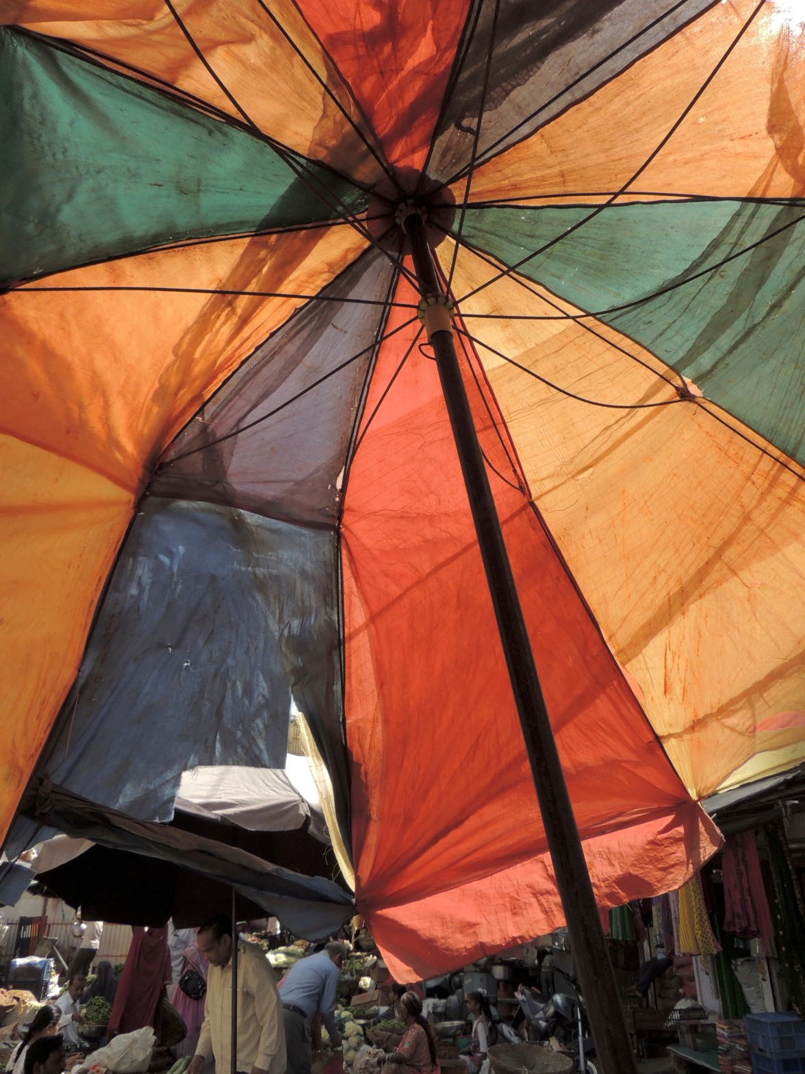 Vegetable Market Umbrella