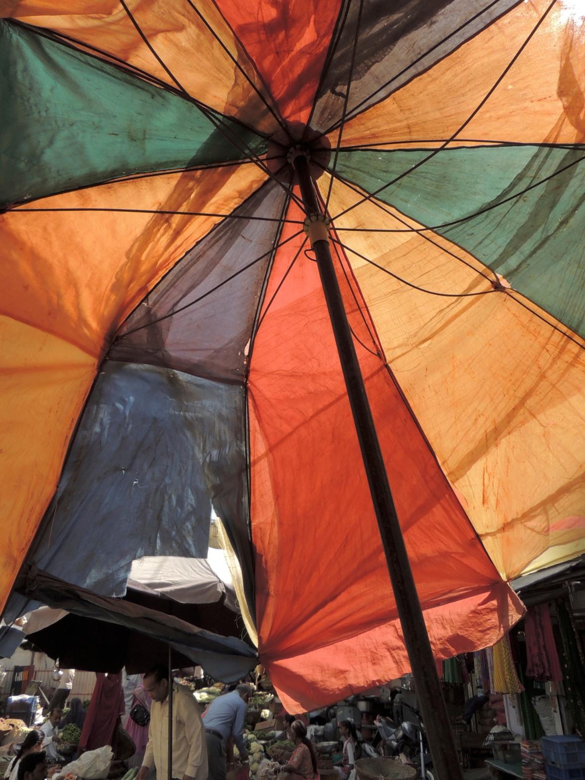 Vegetable Market Umbrella