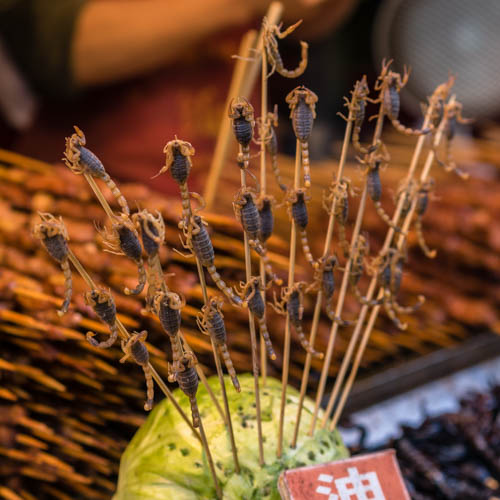 Pictures of Snack Street in Beijing China by Mary Catherine Messner
