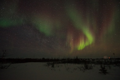 Picture of Northern Lights Aurora Borealis in Churchill Manitoba Canada by mcmessner Mary Catherine Messner