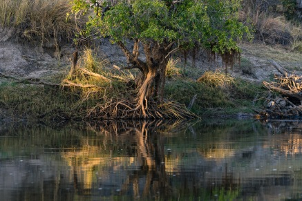 Picture of daylight reflections on Zambezi River, Zambia, Africa while on the 2016 Passport to Folk Art: South Africa trip with BJ Adventures