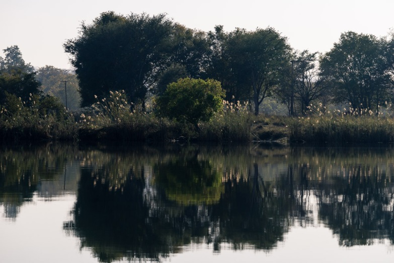 Picture of muted color Rorschach reflections on Zambezi River, Zambia, Africa while on the 2016 Passport to Folk Art: South Africa trip with BJ Adventures