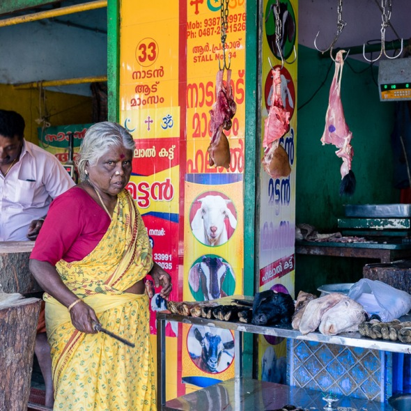 Pictures of people, places, and things in Cochin, Kochi, Kerala, India