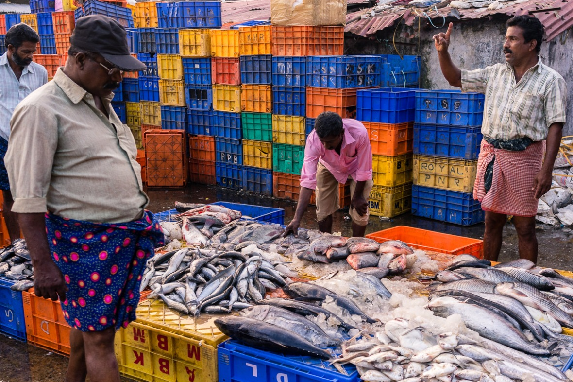 Picture of fish market in Thrissur, Kerala, India